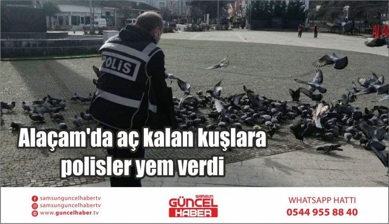 Alaçam'da aç kalan kuşlara polisler yem verdi