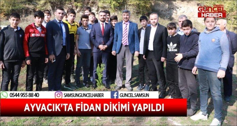 AYVACIK'TA FİDAN DİKİMİ YAPILDI