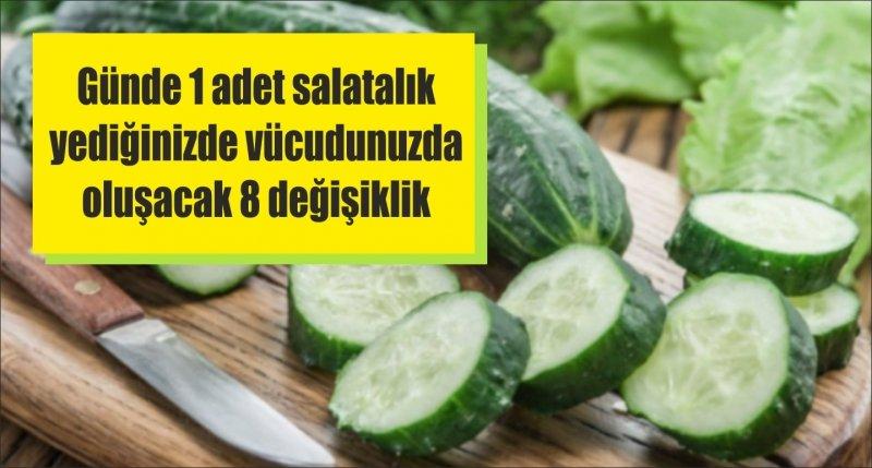 Günde 1 adet salatalık yediğinizde vücudunuzda oluşacak 8 değişiklik
