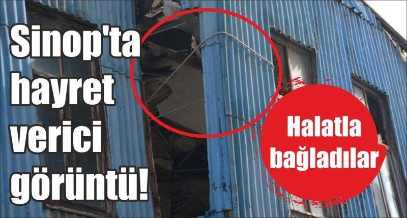 Sinop'ta hayret verici görüntü! Halatla bağladılar
