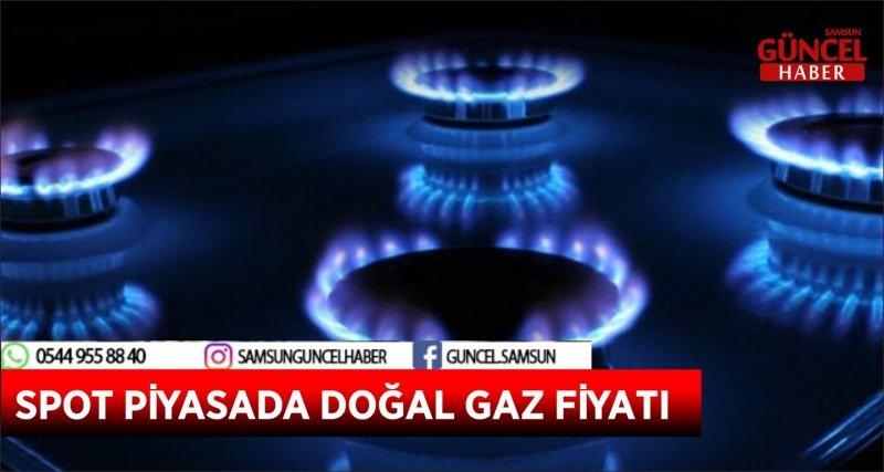 SPOT PİYASADA DOĞAL GAZ FİYATI