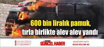 600 bin liralık pamuk, tırla birlikte alev alev yandı