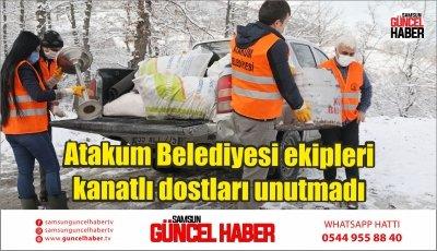 Atakum Belediyesi ekipleri kanatlı dostları unutmadı