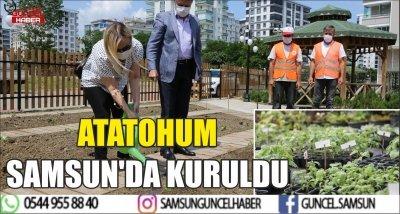 ATATOHUM SAMSUN'DA KURULDU