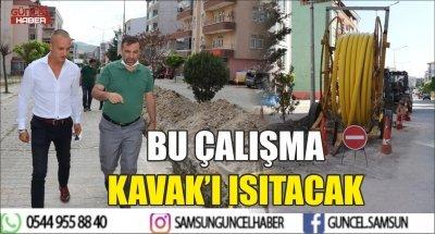 BU ÇALIŞMA KAVAK'I ISITACAK