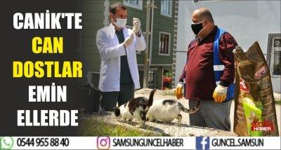 CANİK'TE CAN DOSTLAR EMİN ELLERDE
