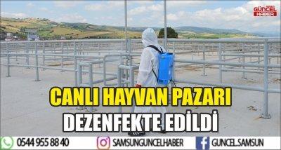 CANLI HAYVAN PAZARI DEZENFEKTE EDİLDİ