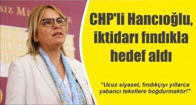 CHP'li Hancıoğlu, iktidarı fındıkla hedef aldı