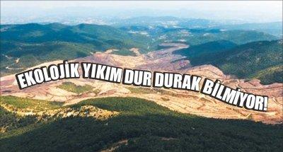 EKOLOJİK YIKIM DUR DURAK BİLMİYOR!