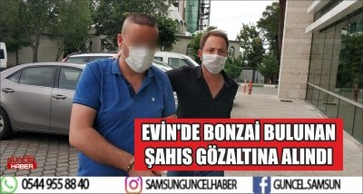 EVİN'DE BONZAİ BULUNAN ŞAHIS GÖZALTINA ALINDI