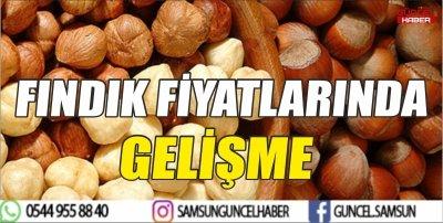 FINDIK FİYATLARINDA GELİŞME