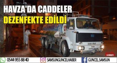 HAVZA'DA CADDELER DEZENFEKTE EDİLDİ