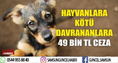HAYVANLARA KÖTÜ DAVRANANLARA 49 BİN TL CEZA