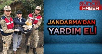 JANDARMA'DAN YARDIM ELİ!