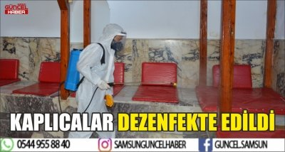 KAPLICALAR DEZENFEKTE EDİLDİ