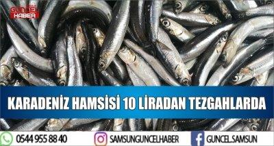 KARADENİZ HAMSİSİ 10 LİRADAN TEZGAHLARDA