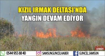 KIZIL IRMAK DELTASI'NDA YANGIN DEVAM EDİYOR
