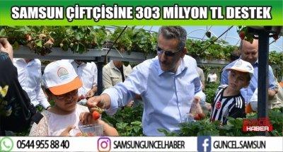 SAMSUN ÇİFTÇİSİNE 303 MİLYON TL DESTEK