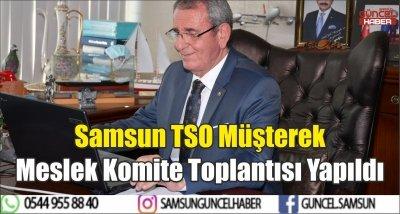 Samsun TSO Müşterek Meslek Komite Toplantısı Yapıldı