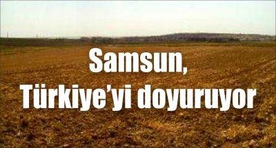 Samsun, Türkiye'yi doyuruyor