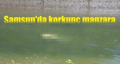 Samsun'da korkunç manzara
