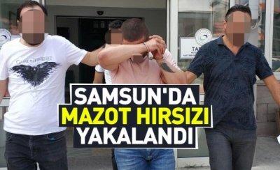 Samsun'da mazot hırsızı yakalandı
