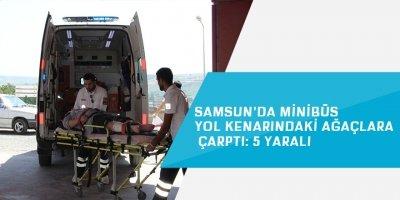 Samsun'da minibüs yol kenarındaki ağaçlara çarptı: 5 yaralı