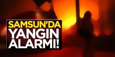 Samsun'da yangın alarmı!